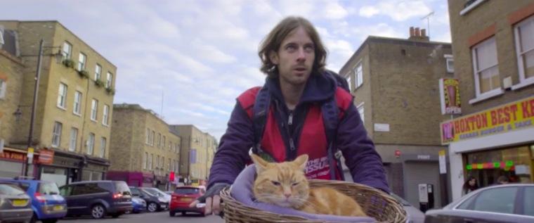 a-street-cat-named-bob-trailer-1-sd-goldposter_com